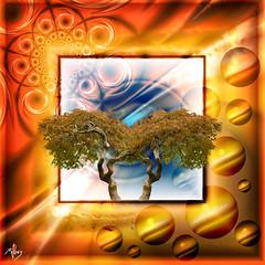 infigraphie - arbre