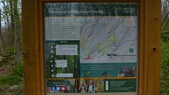 Huckleberry Ridge State Forest,  Port Jervis , New York