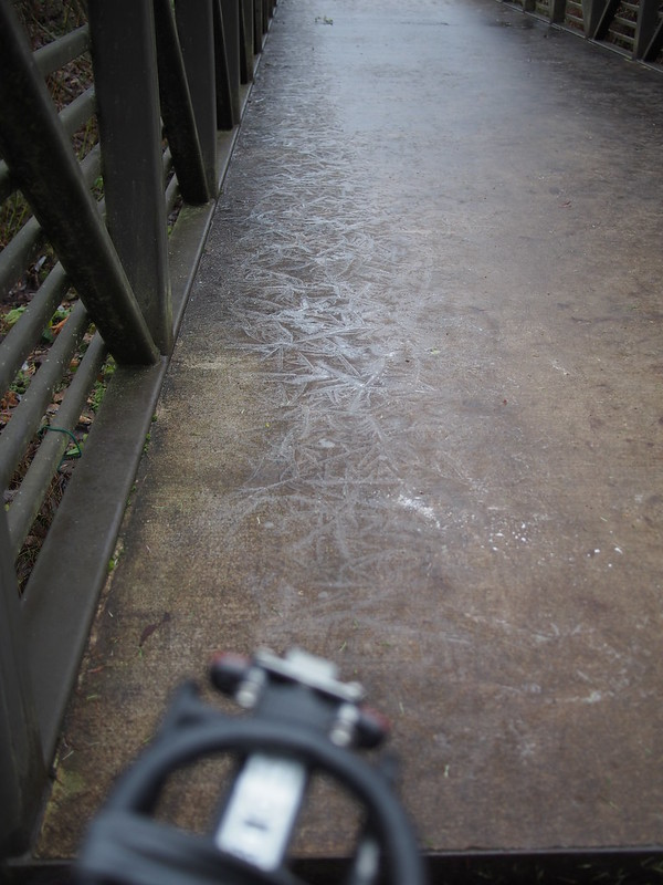 Issaquah–Preston Trail: Icy Bridge: I almost went down on this.