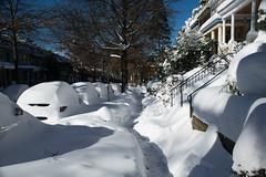 A path through the snow