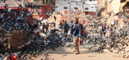 158 Katmandu (56)