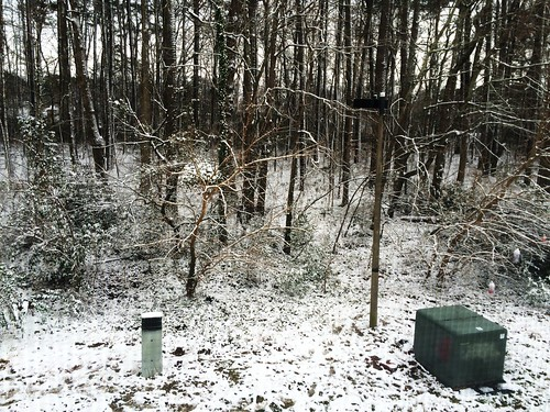 First Snow (January 27 2015)