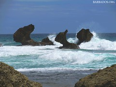 Rocks at Bathsheba, Barbados