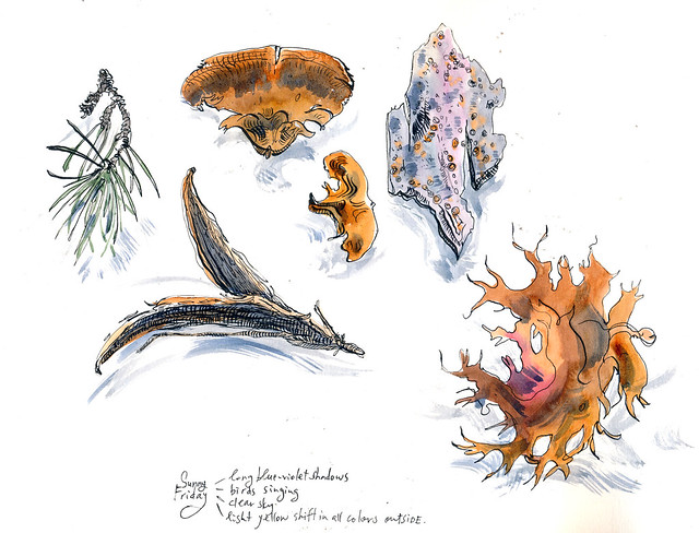 Sketchbook #94: Friday Treasures a few weeks ago.