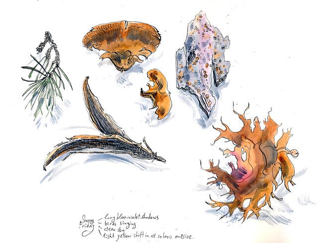 Sketchbook #94: Friday Treasures a few weeks ago.