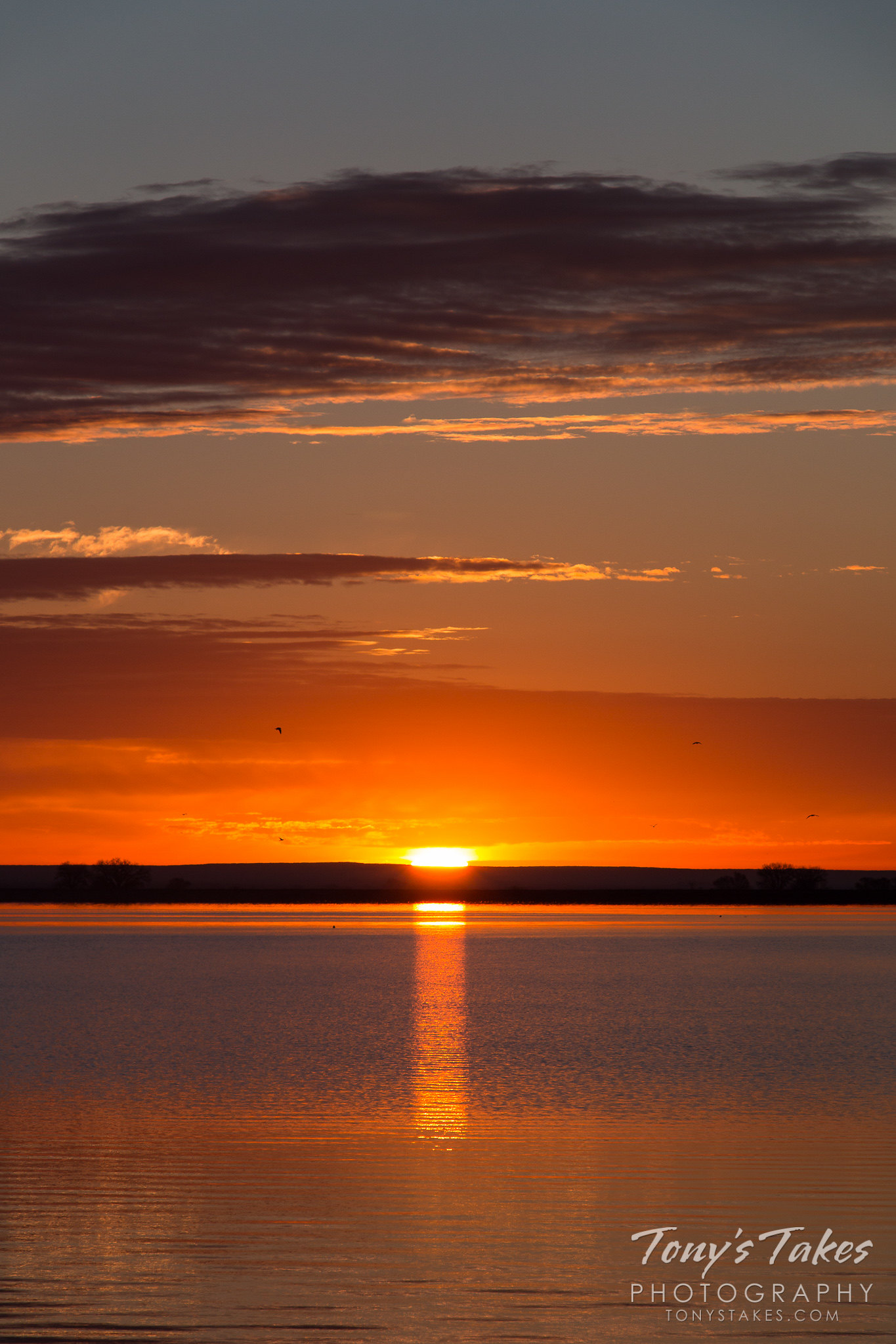 A brilliantly lit sunrise on the Colorado plains. (© Tony's Takes)