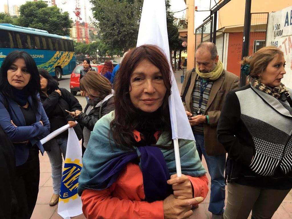 Dirigentes AFIICH en el Congreso Nacional apoyando a Atacama - 12 Abril 2016