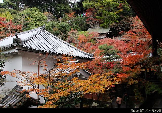 京都-永觀堂114