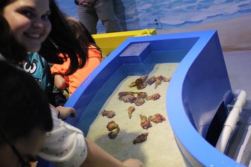Seoul COEX Aquarium