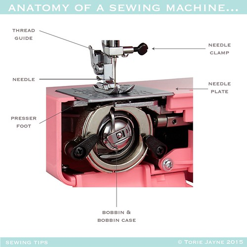 Anatomy of a Sewing Machine 2-01