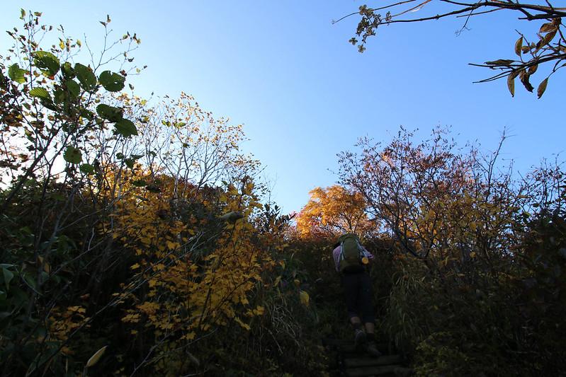 2014-09-28_00284_栗駒山.jpg