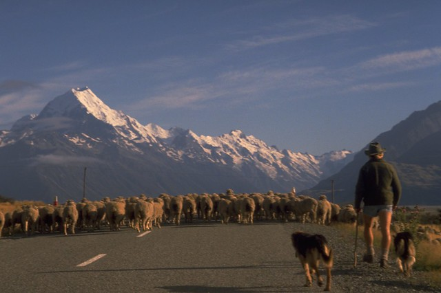 New Zealand Mt Cook