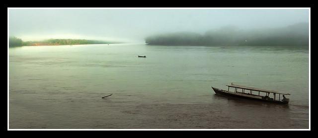 AMANECER CON NIEBLA EN LA SELVA - Peru 2015 Rio Madre de Dios  - Reserva Nacional  Tambopata