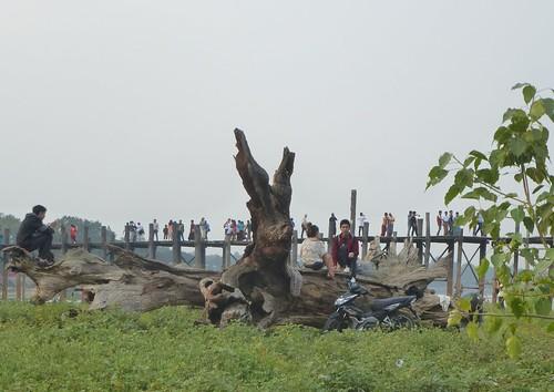 M16-Mandalay-Amarapura-Pont U Bein (21)