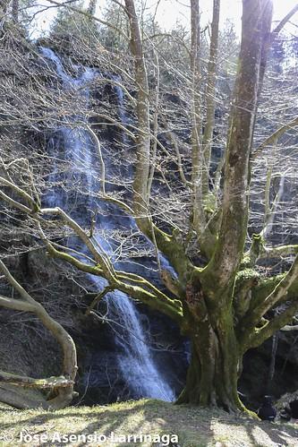 Parque Natural de Gorbeia  #DePaseoConLarri #Flickr -3084