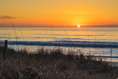 ocean sea sky beach sc water sunrise landscape coast seaside outdoor southcarolina shore serene atlanticocean pawleysisland atlanticsunrise atlanticdawn 8mar16
