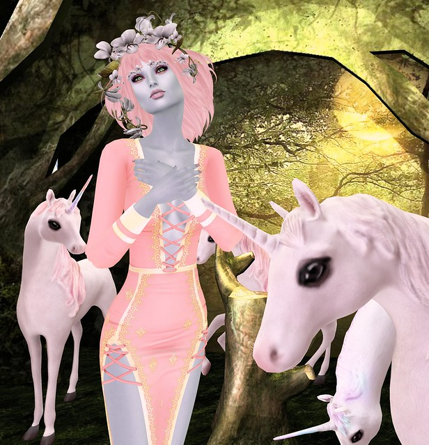 Unicorn Grove