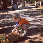 Some-bunny made a friend at the park today. by bartlewife