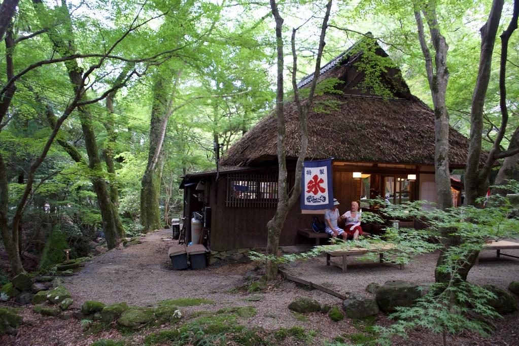 Nara Park_15