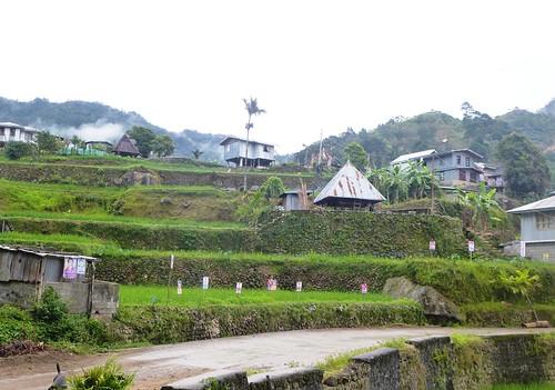 P16-Luzon-Mayoyao-Terrasses (12)