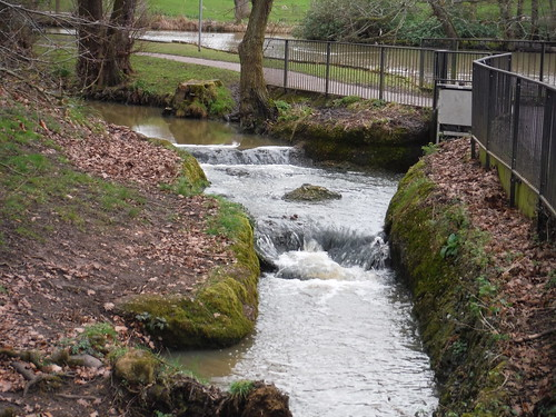 Spittal Brook in Barclay Park