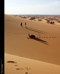 Revisitant el Marroc desèrtic (II)...