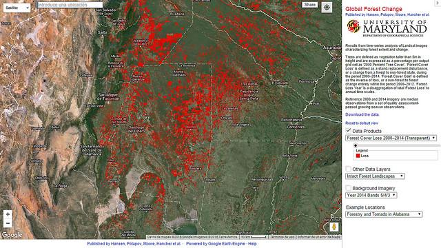 Pérdida de la cubierta forestal 2000 - 2014