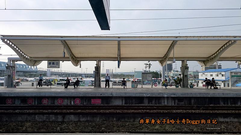 臺鐵新烏日vs高鐵台中站23