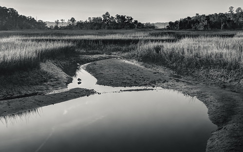 morning autumn light blackandwhite reflection fall nature water monochrome sunrise canon georgia landscape marsh harrisneck