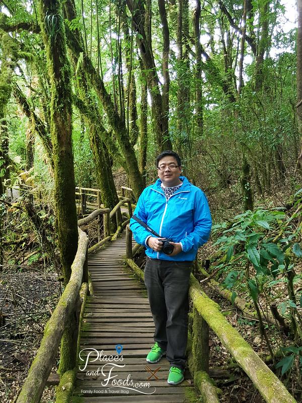 doi inthanon ang ka nature trail placesandfoods