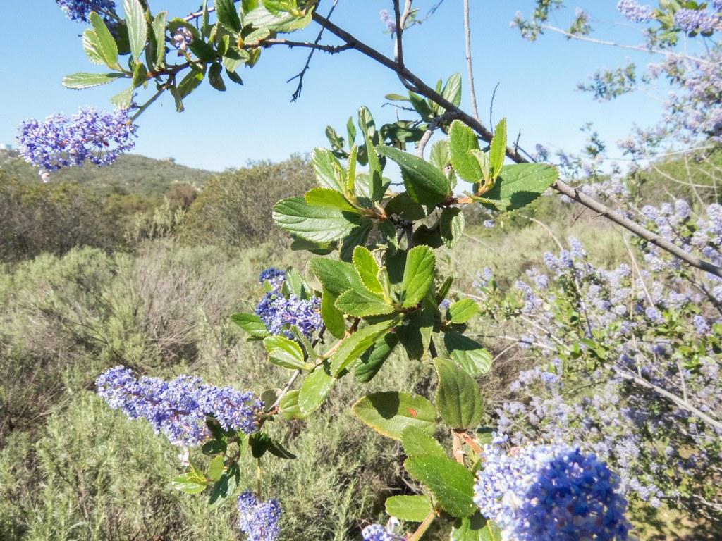 Capitan Grande Reservation San Diego County California