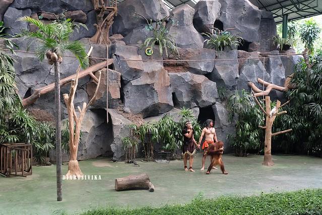 taman safari prigen 20