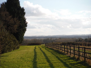 Kennet Valley and Hampshire Downs, from Wooten's