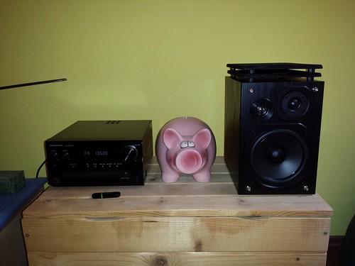 swine gica svinja gicko krmača prasac