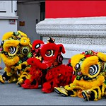 4 - Alfortville Chinagora Nouvel an chinois Danse du lion