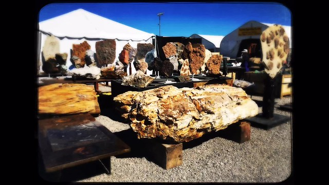 Tucson Gem and Mineral Show at Kino Sports Park.
