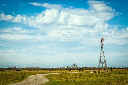 road ranch windmill clouds rural countryside us texas tank unitedstates cows farm beef country pasture winding watertank gravel waller catttle