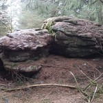 Rough Tor (Burrator)