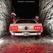 1969 Mustang Rear by Dejan Marinkovic Photography