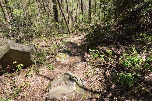 Pinnacle Mountain Falls trail - 4