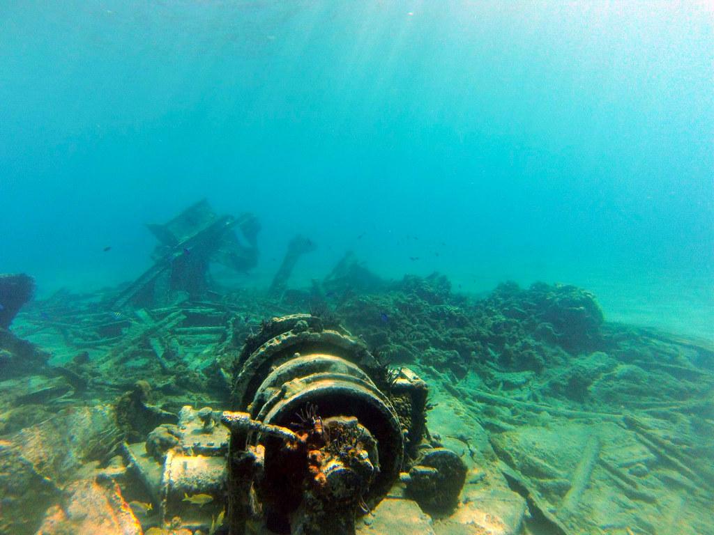 Excursión al arrecife en las islas caimán con el MSC Opera al fondo islas caimán - 26184079632 9e7106b4f3 b - Snorkel en las Islas Caimán