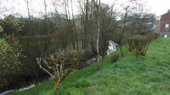 Anor.- Le ruisseau des Anorelles (2) - Photo of Clairfontaine