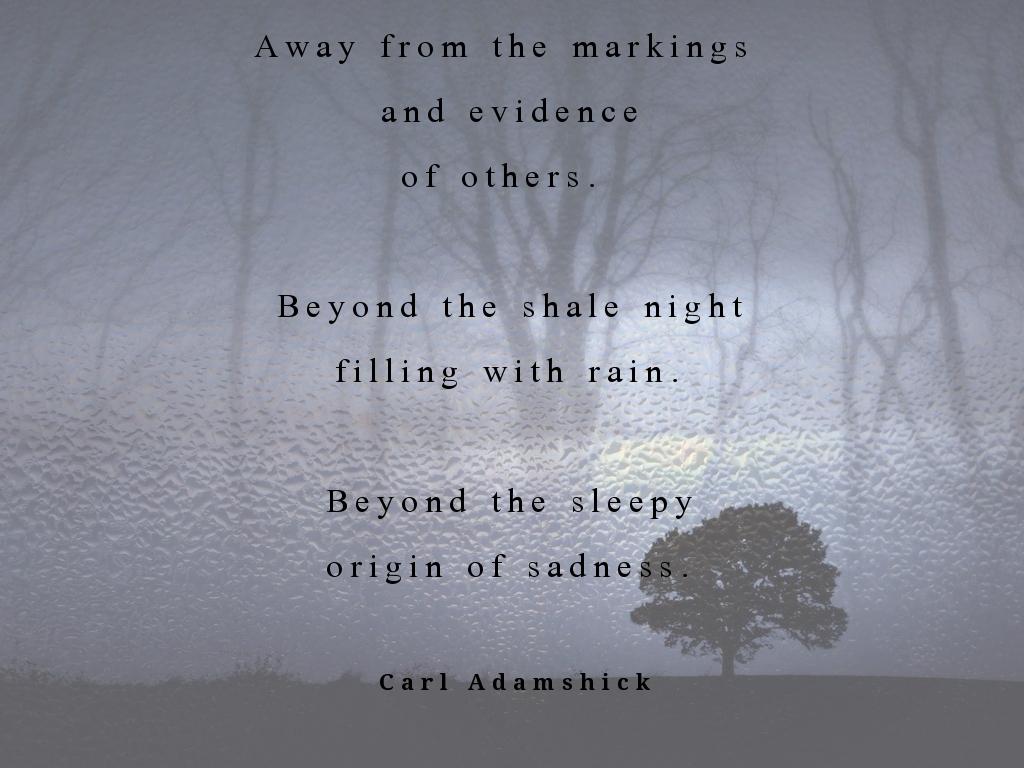 Rain - Adamshick