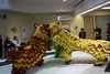 Lion Dance at RBC Royal Bank-7