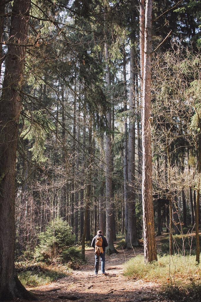 IMG_4003BedC, The Curly Head, thecurlyhead, Amelie, Bayerischer Wald, Viechtach, Großer Pfahl, Hiking, Wandern, Landschaftsfotografie, Photography