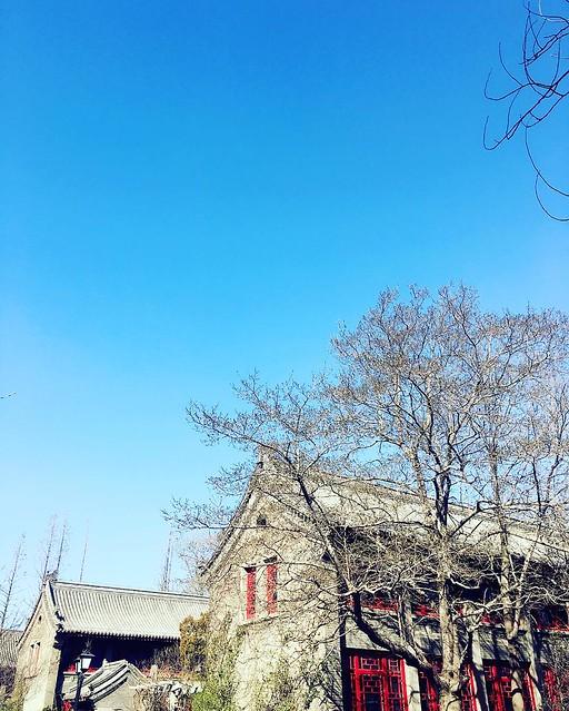 #spring #pekinguniversity