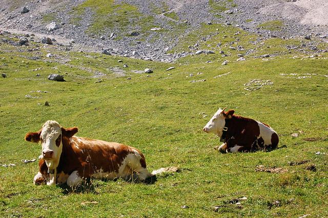 Garmisch - Unterwegs von der Alpspitze zum Kreuzeck durchs Wettersteingebirge (14)