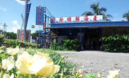 台東縣大武鄉大武漁港周邊景點吃喝玩樂懶人包 (3)