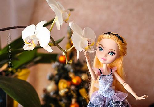 Emma balerina-9