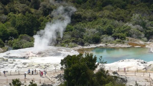 Vue plongeante sur le geyser de Te Puia
